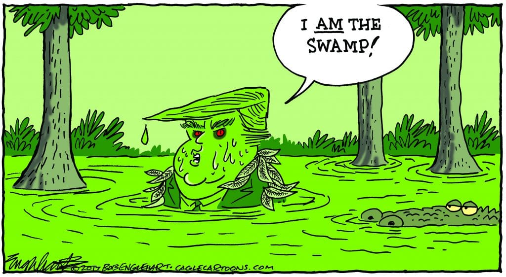 Life In The Swamp
